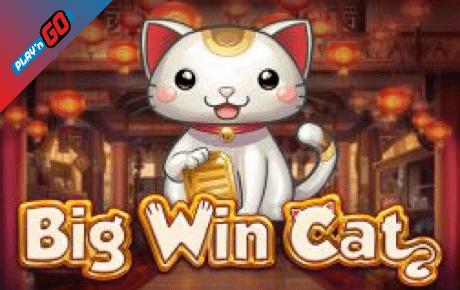 big win cat slot machine online