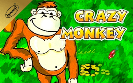 crazy monkey slot machine online