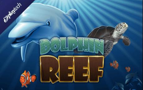 dolphin reef slot machine online