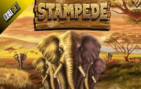stampede slot machine online