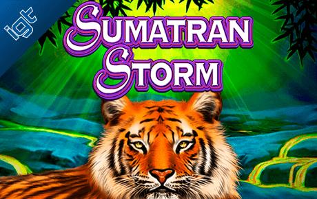 sumatran storm slot machine online