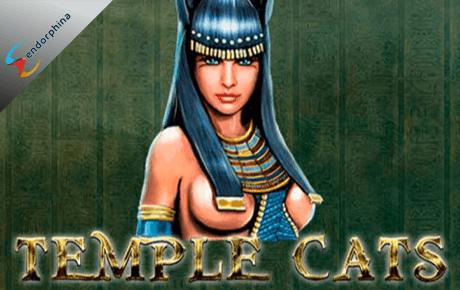 Temple Cats slot machine