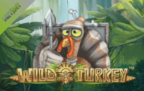 wild turkey slot machine online