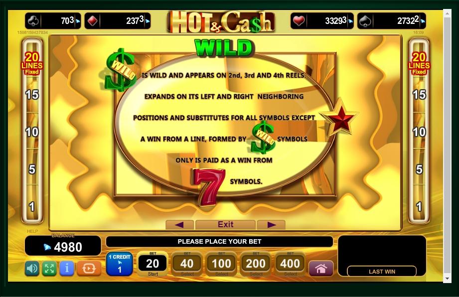 hot & cash slot machine detail image 3