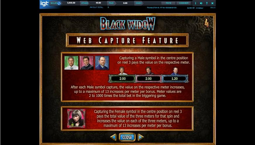 black widow slot machine detail image 3