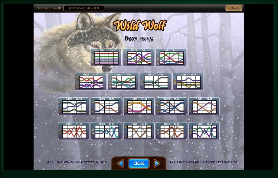 Wild wolf slots free play