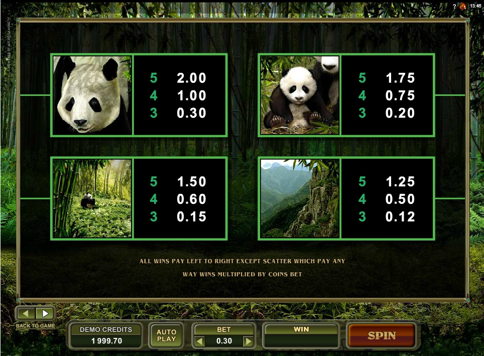 untamed giant panda slot machine detail image 1