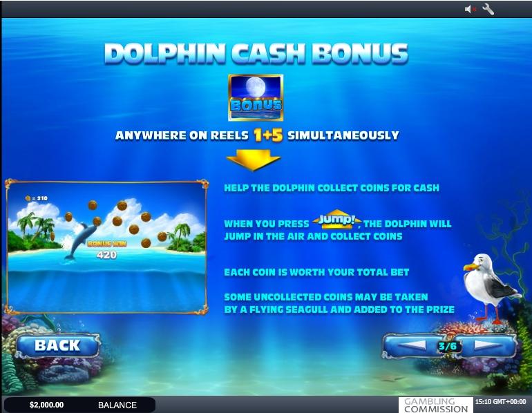 dolphin cash slot machine detail image 3
