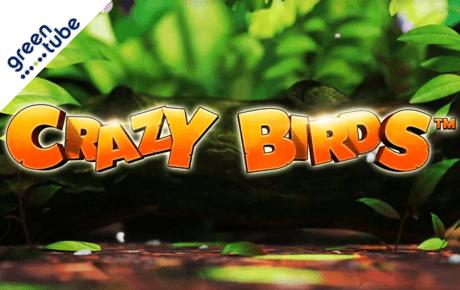 crazy birds slot machine online