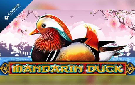 mandarin duck slot machine online