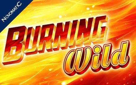 burning wild slot machine online