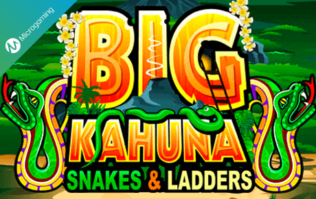 big kahuna snakes and ladders slot slot machine online