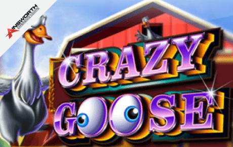 crazy goose slot machine online