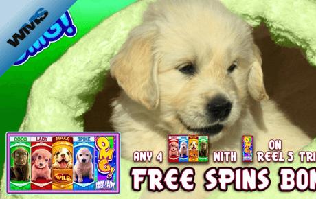 Free wpt poker online
