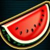 watermelon - 40 treasures