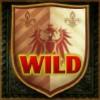 wild symbol - 5 knights