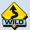 wild symbol - 5 reel drive