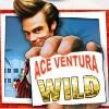 ace with business card: wild symbol - ace ventura