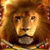 lion: wild symbol - african sunset