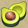 avocado - age of discovery