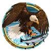 eagle - alaskan fishing