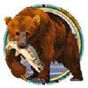 bear - alaskan fishing