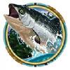 a fish - alaskan fishing