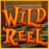 wild symbol - alice adventure