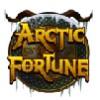 wild symbol - arctic fortune