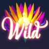 aster: wild symbol - butterfly staxx