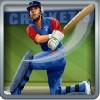 batcher in blue uniform - cricket star