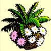 white flowers - dino might
