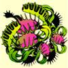 venus flytrap - dino might