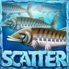 scatter - lucky angler
