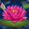 lotus - lucky koi