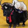 black buffalo - paradise found