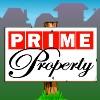 wild symbol - prime property