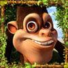 monkey - safari sam