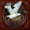 bird - shaolin spin