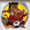 a wild boar - soccer safari
