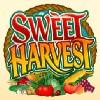 wild symbol - sweet harvest
