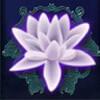 lotus flower - the forgotten land of lemuria